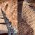 Опорные стены, габионы Крым, Купить от производителя. Стоунтек - Stonetech - Крым, Донское